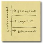 Framework5